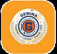 Gemina02